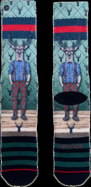Mehrfarbige/Bunte XPOOOS Socken 60171  - large