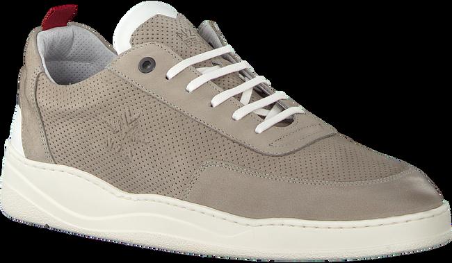 Graue NEW ZEALAND AUCKLAND Sneaker DARFIELD - large