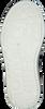 Blaue TOMMY HILFIGER Sneaker low LOW CUT VELCRO SNEAKER  - small