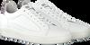 Weiße FLORIS VAN BOMMEL Sneaker low 13265  - small