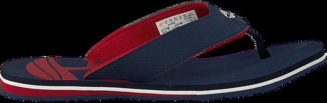 Blue TIMBERLAND shoe WILD DUNES SYNTH M THO  - large
