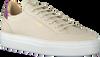 Beige NUBIKK Sneaker low JOLIE NAYA  - small