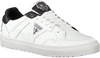 Weiße GUESS Sneaker BRIAN  - small