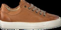 Cognacfarbene PAUL GREEN Sneaker low 4841-006  - medium