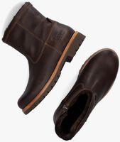 Braune PANAMA JACK Ankle Boots FEDRO  - medium