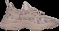 Taupe STEVE MADDEN Sneaker low MASTERY  - medium