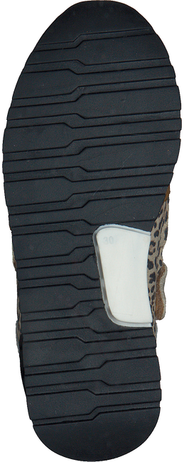 Beige PINOCCHIO Sneaker low P1249  - large