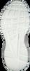 Schwarze STEVE MADDEN Sneaker ANTOINIA  - small