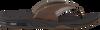 Braune REEF Zehentrenner FANNING - small