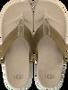 green UGG shoe TENOCH HYPERWEAVE  - small