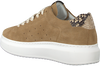 Beige MARUTI Sneaker low CLAIRE  - small