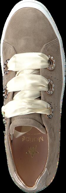 Taupe MARIPE Sneaker 26708  - large