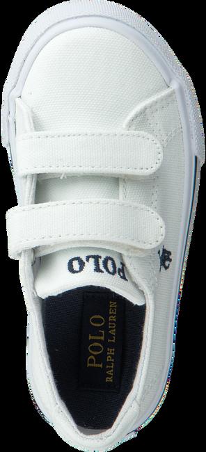 Weiße POLO RALPH LAUREN Sneaker SLATER - large