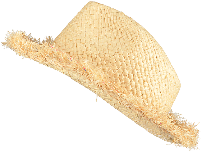Beige LE BIG Hut JOVI HAT - large