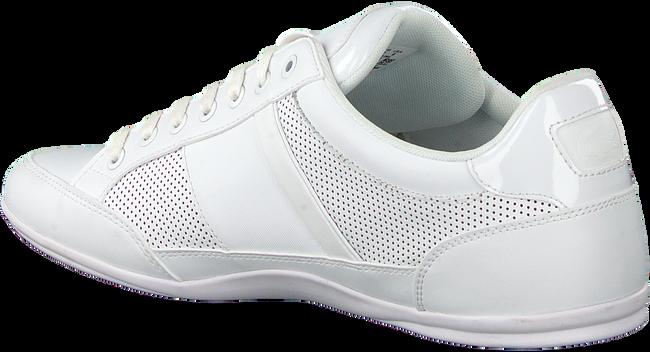 Weiße LACOSTE Sneaker low CHAYMON 120 3  - large