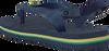 Blaue HAVAIANAS Zehentrenner BABY BRASIL LOGO - small