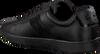 Schwarze LACOSTE Sneaker CARNABY EVO 319 1  - small