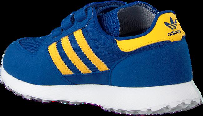 Blaue ADIDAS Sneaker FOREST GROVE CF C  - large