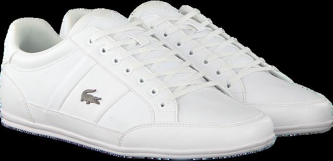 Weiße LACOSTE Sneaker CHAYMON BL  - large