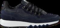 Blaue FLORIS VAN BOMMEL Sneaker low 16393  - medium