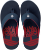 Blue TIMBERLAND shoe WILD DUNES SYNTH M THO  - small