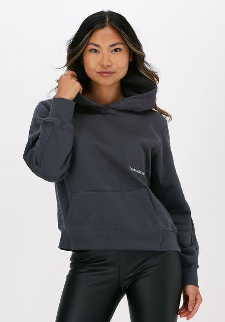 Graue CALVIN KLEIN Sweater OFF PLACED MONOGRAM HOODIE - large