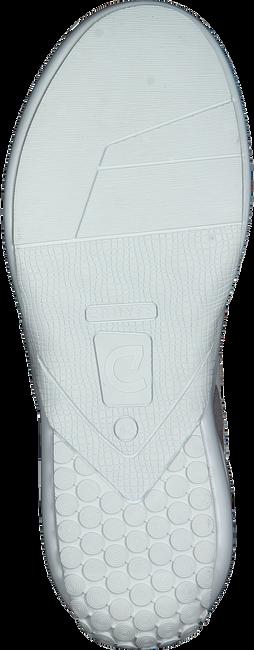 Weiße CRUYFF CLASSICS Sneaker LIGA  - large