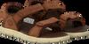 Braune TIMBERLAND Sandalen NUBBLE SANDAL LTHR 2 STRAP - small