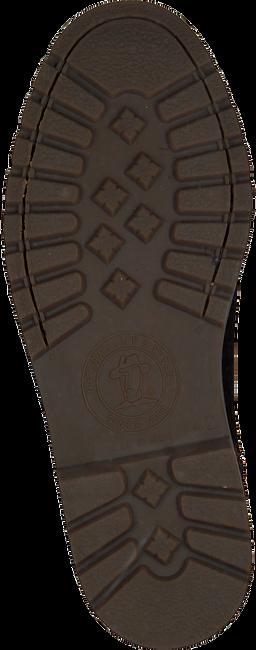 Braune PANAMA JACK Ankle Boots FEDRO  C13 - large