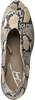 Beige TORAL Pumps 11040  - small