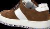 Cognacfarbene MAZZELTOV. Sneaker 3463  - small