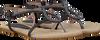 Black MALUO shoe 4758  - small