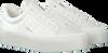 Weiße CALVIN KLEIN Sneaker low JAMELLA  - small