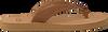 cognac UGG shoe TAWNEY  - small