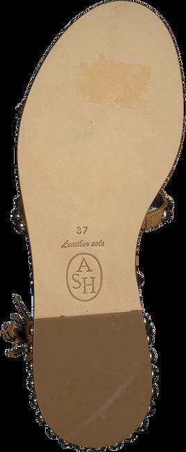 Cognacfarbene ASH Sandalen POWER  - large