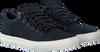 Graue TIMBERLAND Sneaker ADV 2.0 CUPSOLE ALPINE OX ADV - small