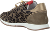 Taupe VIA VAI Sneaker 5013098 - small