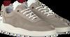 Graue NEW ZEALAND AUCKLAND Sneaker DARFIELD - small