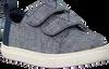 Blaue TOMS Sneaker LENNY  - small