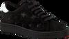 Schwarze STUDIO MAISON Sneaker STARDUST SWEAR - small