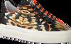 Orangene FLORIS VAN BOMMEL Sneaker low 85297  - small