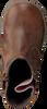 Cognacfarbene BUNNIES JR Stiefeletten CISS CLASSIC - small