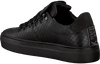 Schwarze NUBIKK Sneaker JAGGER JOE CLASSICS  - small