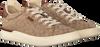 Braune COACH Sneaker low ADB SIG JACQUARD LOW TOP  - small