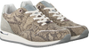 Taupe MEXX Sneaker low EFLIN  - small