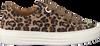 Beige GABOR Sneaker 464 - small