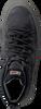 Graue NAPAPIJRI Sneaker MID BLAST  - small