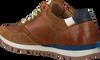 Cognacfarbene AUSTRALIAN Sneaker low NAVARONE  - small