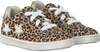 Beige TON & TON Sneaker low OM120142  - small