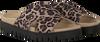 Rosane GABOR Pantolette 741 - small